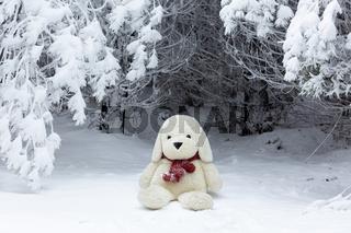 Stuffed bear wearing a woman's knit scarf in the snow