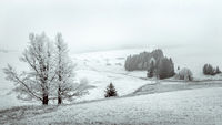 Snowy landscape in the Erzgebirge mountains