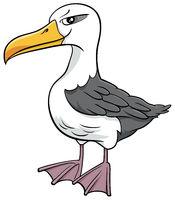 albatross bird animal character cartoon illustration