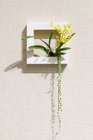 flower arrangement on the wall