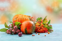 Autumn composition of pumpkins and mountain ash branches with viburnum.