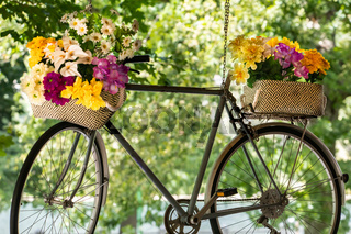 Flowers Bouquets decoration on bicycle