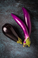 Assortment of fresh aubergines on dark background