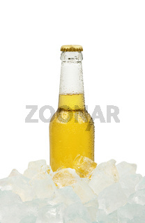 One bottle of cold lager beer on ice cubes