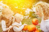 Familie beim Kürbis ernten für Halloween