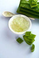 Slices of Aloe Vera leave and Aloe Vera gel in a bowl on a white background. Aloe Vera is a very useful herbal medicine for skin care and hair care.