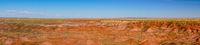 Petrified Forest National Park Arizona USA North America Landscape