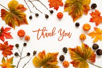 Bright Colorful Autumn Leaf Decoration, English Text Thank You