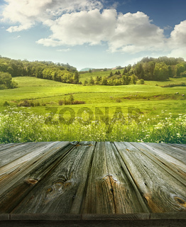 Summer pastoral background with wooden planks
