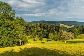 Grüne hügelige Landschaft bei Schuttertal im Schwarzwald, Baden-Württemberg, Deutschland