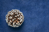 frosty decorative pine cone on blue background