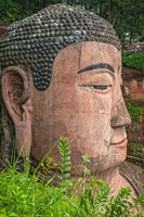 Majestic Giant Leshan Buddha head