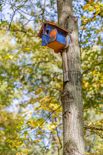 Empty feeder for birds in the park