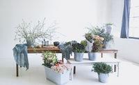 Flower arrangement in light room