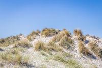 Sand dunes wadden islands Netherlands