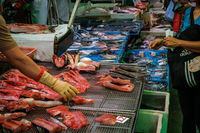 Buying fish on market in HongKong