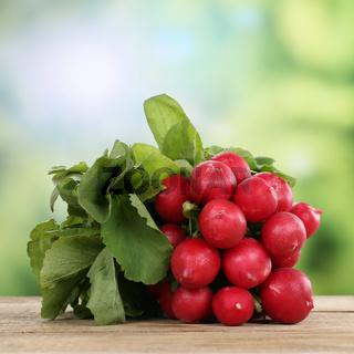 Radieschen Gemüse im Sommer