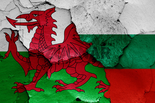 flags of Wales and Bulgaria painted on cracked wall