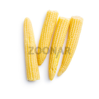 Pickled young baby corn cobs