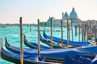Gondolas with mooring poles and Santa Maria della Salute church n Venice