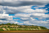 Vineyard with a band of rocks under a fantastic cloudy sky in southern Germany