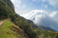 Hiking trail above the clouds near Arguamul in the northwest of the island of La Gomera