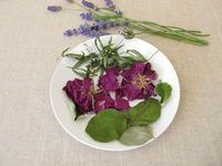 Fragrant potpourri with rose petals, sweet woodruff, quince leaves and lavender