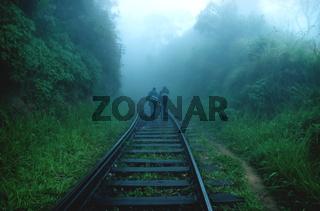 Two people walking in rain on railway through foggy jungle forest, Ella Sri Lanka