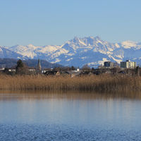 Houses in Wetzikon and snow covered mountains.