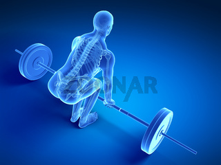 3d rendered medical illustration - correct lifting posture