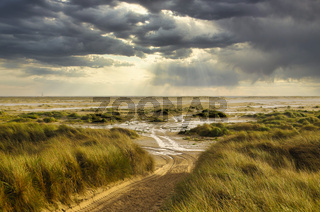 In the Dunes at the Beach of Amrum, Germany, Europe
