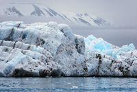Icebergs, Spitsbergen, Norway