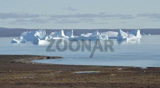 Riesige Eisberge in der Bucht des Sydkap, Scoresby Sund, Ost-Grönland