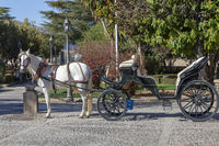 Horse-drawn carriage in Ronda
