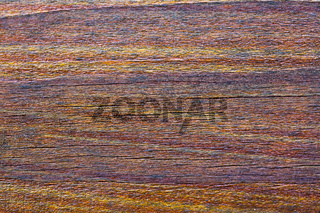 Wood brown texture background, macro shot.