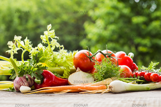 Fresh homegrown vegetables on table outdoors on summer day