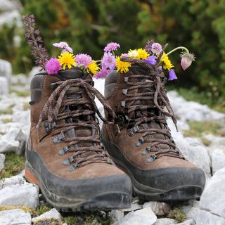 Wanderstiefel von einem Wanderer mit Blumen