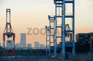 Crane group of Yokohama Port and evening