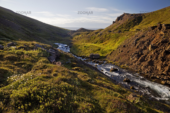 River in the valley of the Sandfell Mountain, East Iceland, Iceland, Europe