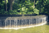 tropical water cascade