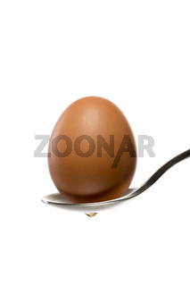 brown egg on a spoon, isolated on white