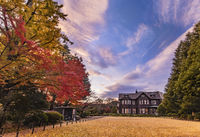 Sunset on Tokyo Metropolitan Park KyuFurukawa's old western-style mansion at red maple