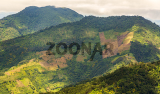Guatemala Hillside Farming