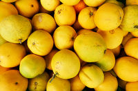 Organic orange fruits at the market