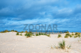Düne an der Küste der Ostsee in Warnemünde
