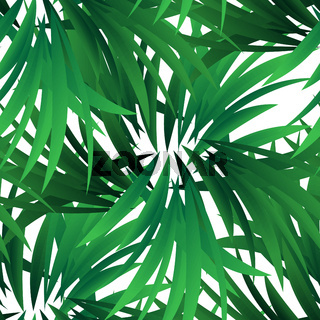 Exotic jungle wallpaper. Seamless vector floral pattern. Spring decoration. Pattern design. Beautiful seamless floral jungle pattern. Exotic green background. Summer tropical leaf