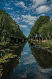 Bushes and grove along canal with sky reflected on water in Damme