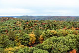 Algonquin National Park during autumn
