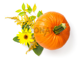 Autumn Composition With Pumpkin Isolated On White