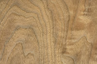 walnut wood veneer background